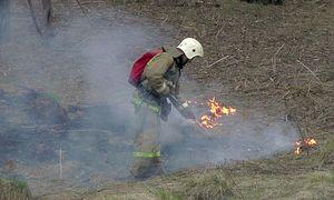 В Белгороде спасатели патрулируют леса