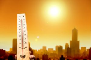 Сегодня в Липецке ожидается аномальная жара