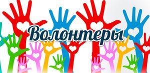 Курский регион вошел в пятерку лидеров по числу волонтеров