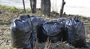 Курские школьники приняли участие в экологическом субботнике
