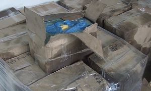 В Курске прикрыли подпольный цех по производству сливочного масла