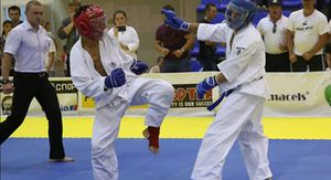 Курские каратисты выиграли золото, серебро и бронзу на Кубке России