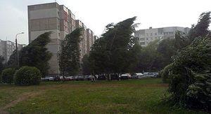 В Липецке ураган валит деревья на машины и проезжую часть