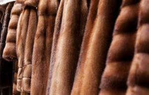 Импортные женские шубы конфисковали в Белгороде