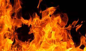 32 человека погибли из-за пожаров в Белгородской области