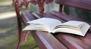 Курян приглашают в «Летний парк чтения»
