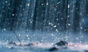 В Липецке ожидается опасное усиление ветра и дождь
