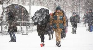 Зима начнется в Воронежской области с метели