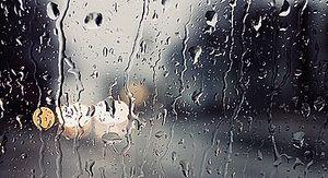 Проливные дожди обрушатся на Ростовскую область с 16 марта