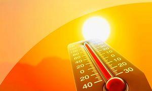 В Липецкой области с 25 мая закончатся дожди, потеплеет до +26 градусов