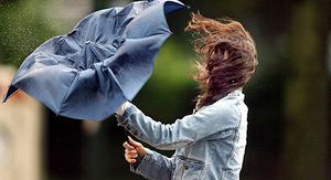 МЧС передало штормовое предупреждение в Алтайском крае из-за ветра и ливней