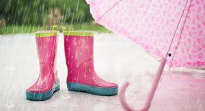 Дожди с грозами и похолодание придут в Ростов на выходных