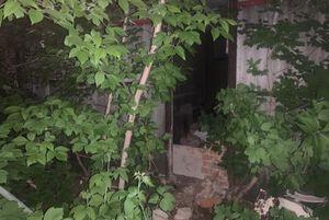 Ребенок погиб при обрушении стены гаража в Саратовской области