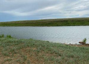 Саратовский рыбак погиб в реке, пытаясь распутать леску для удочки