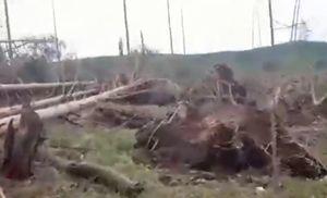 Ураган повредил школу и дома в поселке в Свердловской области