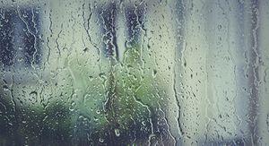 Сильные дожди в Ростовской области будут лить все выходные