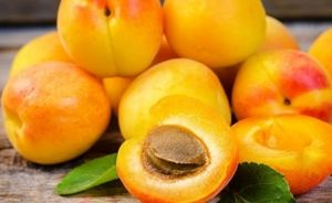Диетолог Татьяна Бочарова призвала соблюдать безопасную норму абрикосов в сутки