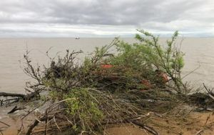 СК завел дело после пропажи супругов на озере Ханка в Приморье