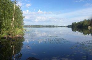 На озере в Карелии четыре человека погибли из-за перевернувшейся лодки