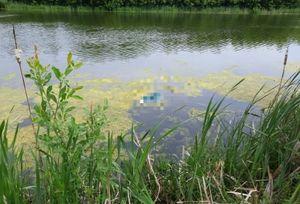 Тело пропавшей в Саратовской области женщины нашли в водоеме