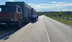 Водитель КамАЗа переехал 11-летнюю девочку на пешеходном переходе в Ростовской области