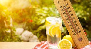 В Курске обещают жару до +34 градусов в среду 23 июня
