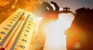 Аномальная жара в европейской части России может продолжиться на следующей неделе