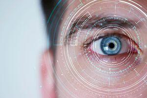 Аналог мозга с функцией зрения вырастили немецкие ученые из стволовых клеток