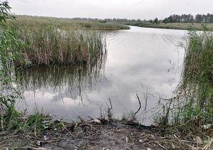 В Воронежской области в пруду утонул 17-летний подросток