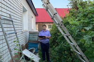В Саратовской области во время ремонта крыши мужчина упал с лестницы и погиб