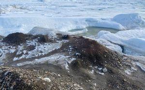 Самый северный остров на Земле случайно открыли ученые у берегов Гренландии