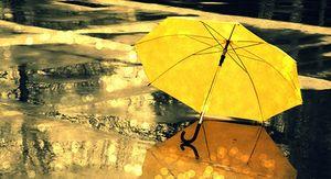 В Курске обещают до +24 градусов и дожди в первый день осени