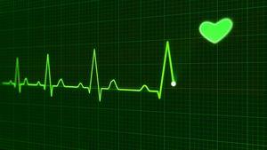 PNAS: учащенное сердцебиение у человека может влиять на процесс принятия решений