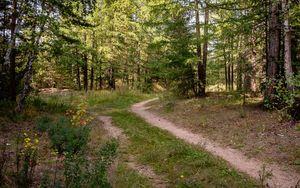 Пропавшего в Свердловской области 41-летнего охотника нашли мертвым