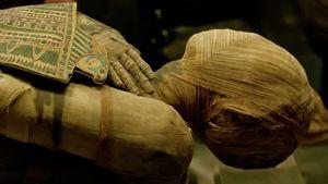 Ученые впервые по образцам ДНК воссоздали лица древнеегипетских мумий