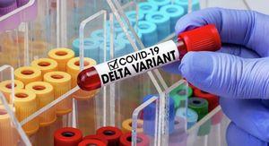 Врач-иммунолог Болибок: новым симптомом «дельта»-штамма коронавируса стал насморк